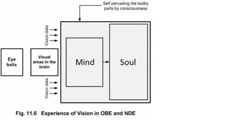 NDE vision