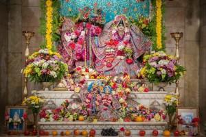 Radha Vallabha Jiu